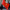 Kırgızistan'da Başbakan Caparov'un destekçilerinden hükümet binasında protesto